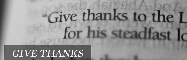 Give Thanks, by Tony D'Amico